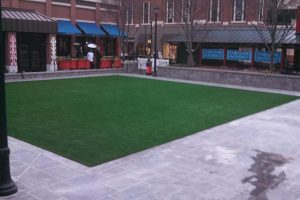 SYNTHETIC TURF INSTALLATION GEORGIA 40